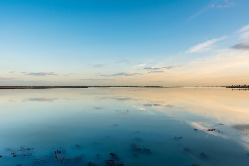 Farlington Marshes, Hampshire